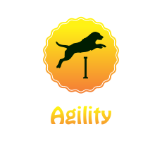 ico_agility